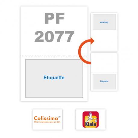 PF_2077
